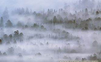 Morning fog rolls through Horseshoe Park in Rocky Mountain National Park in Colorado.