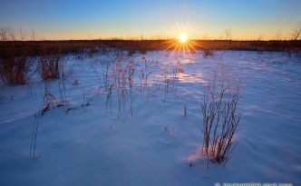 The sun rises on a new year over the Prairie at Boyer Chute National Wildlife Refuge in eastern Nebraska.