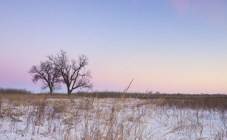On a cold, winter day, dusk falls upon the prairie at Boyer Chute National Wildlife Refuge in eastern Nebraska.