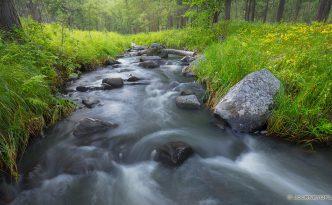 Black Hills Cascades