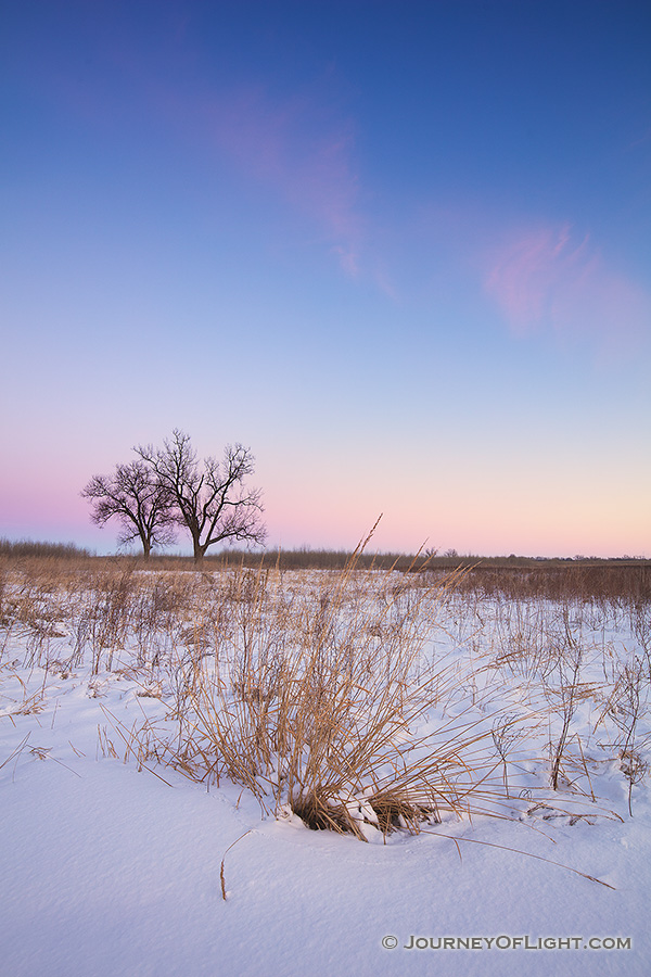 On a cold, winter day, dusk falls upon the prairie at Boyer Chute National Wildlife Refuge in eastern Nebraska. - Boyer Chute Photography