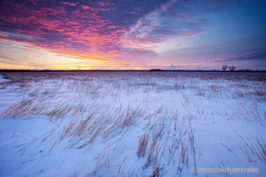 On a cold, early January morning, a snow covered prairie at Boyer Chute National Wildilfe Refuge is greated with a beautiful sunrise.  Due to the very low temperatures, on the horizon a light pillar is visible where in the location the sun will eventually rise. - Boyer Chute Photography