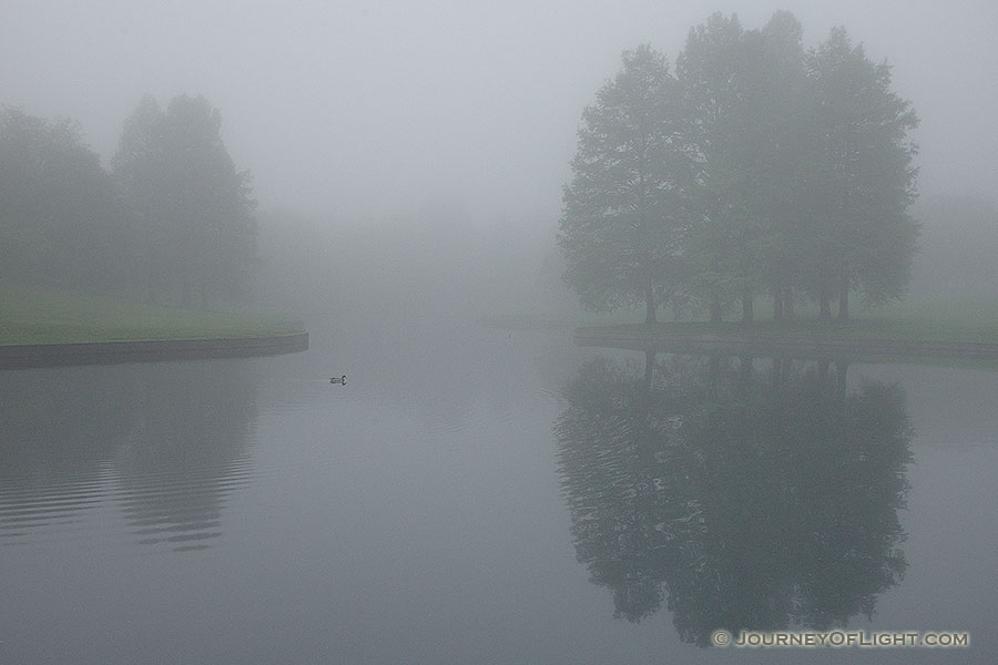 A quiet morning by a small pond near the Gateway Arch. - Jefferson National Expansion Memorial Photography