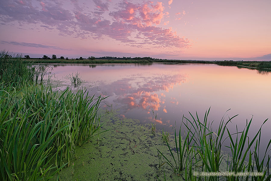 On a hot and humid summer evening, twilight descends over the salt creek marsh at Jack Sinn Wildlife Management Area. - Nebraska Photography