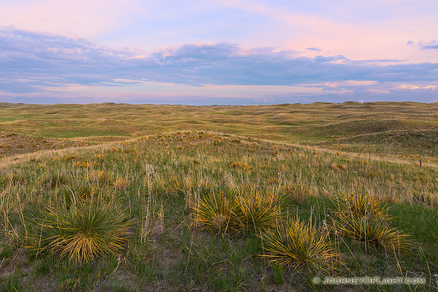 As twilight descends, a calm comes over an expanse of the sandhills in Cherry County, Nebraska. - Nebraska Photography