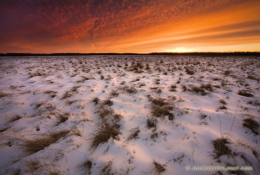This photograph was taken 20 minutes after sunset when the clouds in the sky were still alit with the magnificent winter light at Desoto National Wildlife Refuge, Nebraska.  - DeSoto Photography