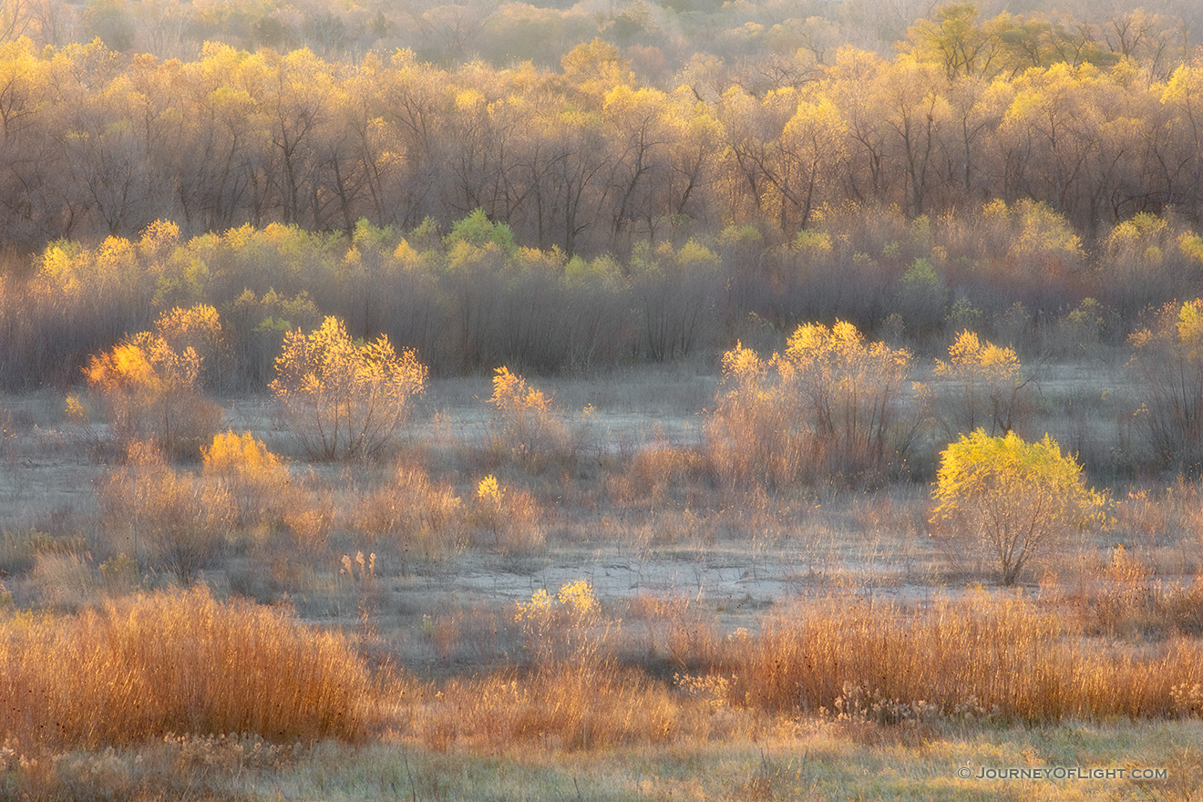 A photograph of autumn color at Niobrara State Park, Nebraska