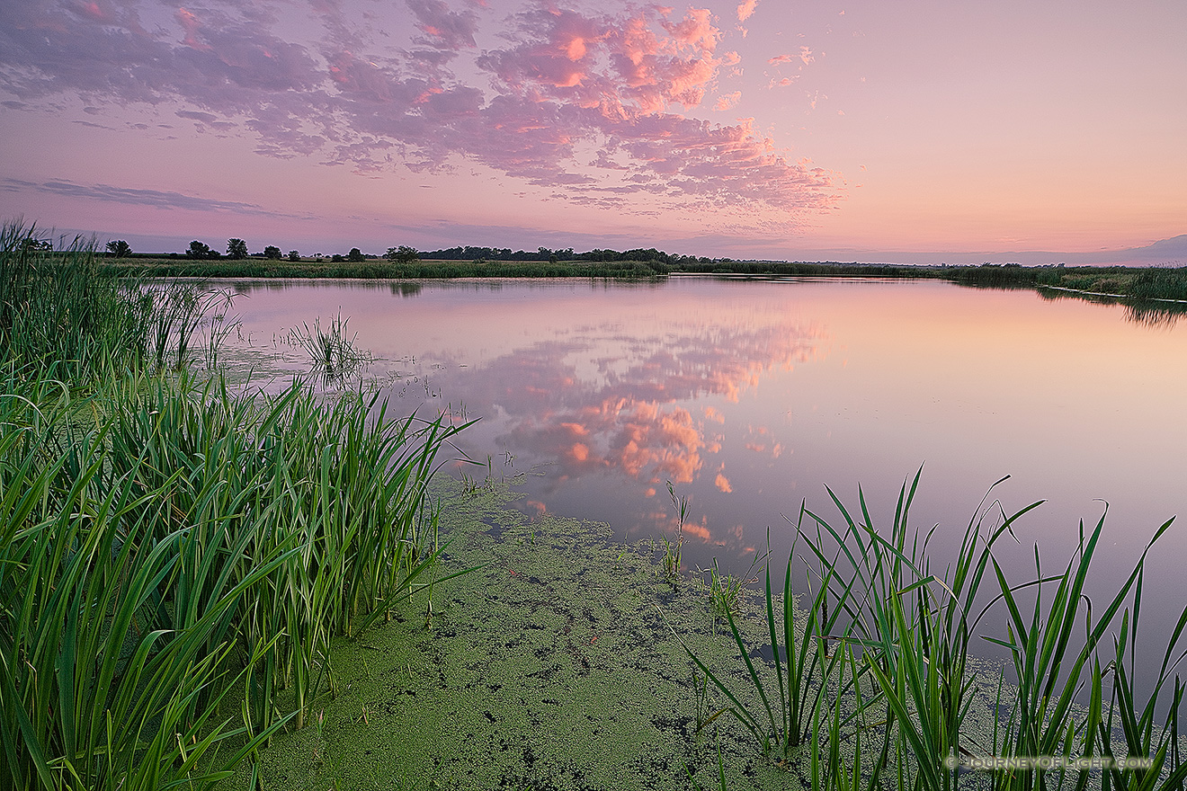 On a hot and humid summer evening, twilight descends over the salt creek marsh at Jack Sinn Wildlife Management Area. - Nebraska Picture