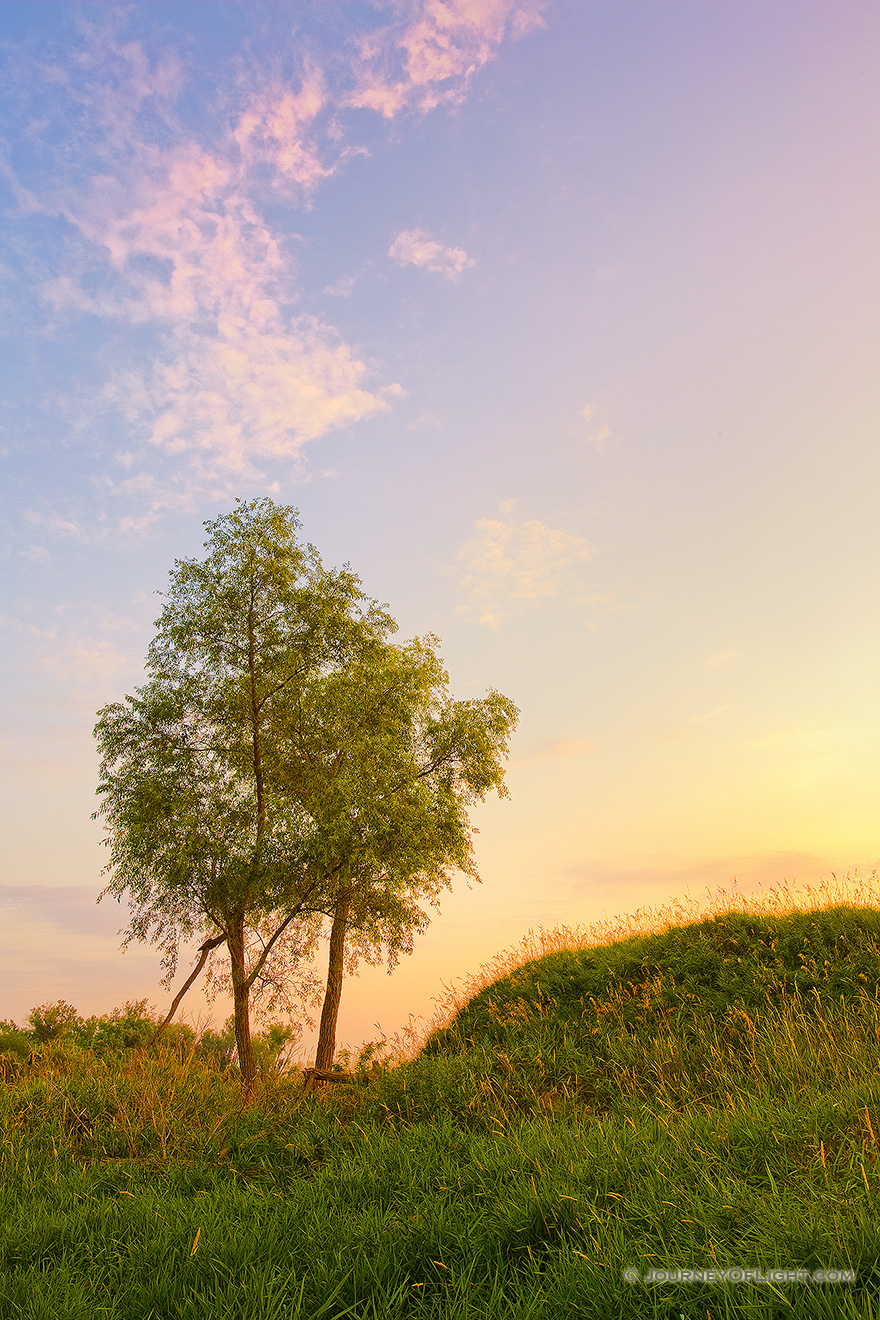 Two trees enjoy the sunset at Boyer Chute National Wildlife Refuge. - Boyer Chute Picture