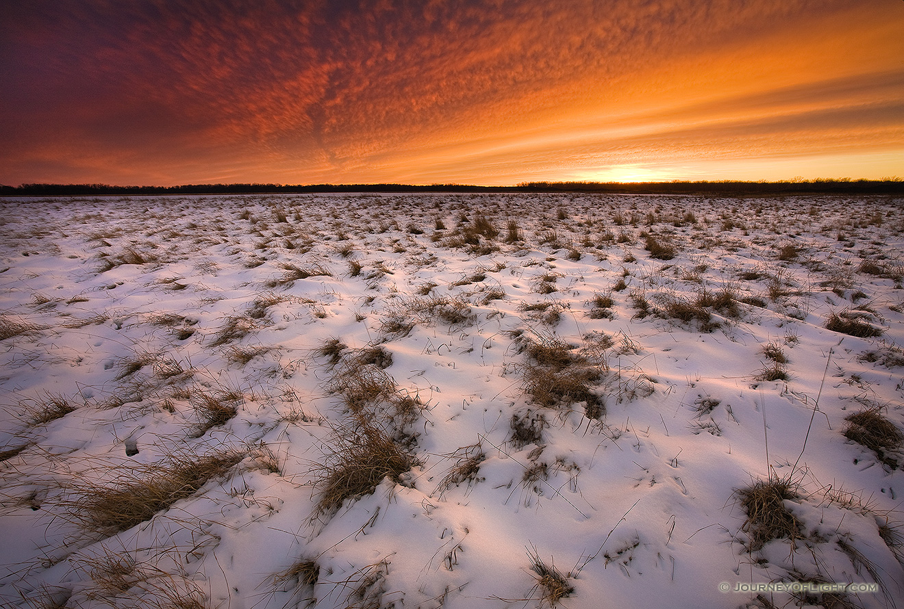 This photograph was taken 20 minutes after sunset when the clouds in the sky were still alit with the magnificent winter light at Desoto National Wildlife Refuge, Nebraska.  - DeSoto Picture