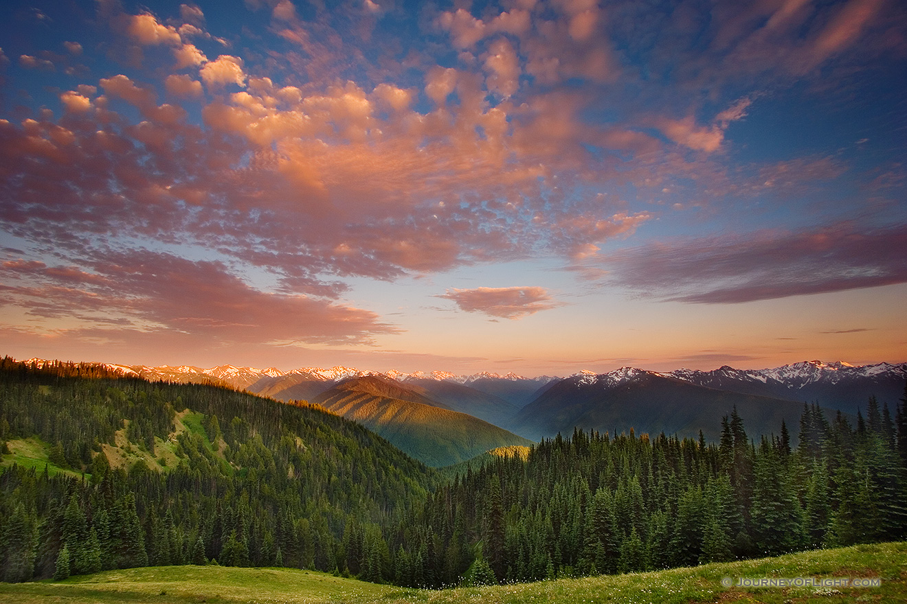 The Olympic Mountain Range in Olympic National Park from Hurricane Ridge.  Designated a 95% wilderness, Olympic National Park is located on the Olympic Pennisula in Washington state. - Pacific Northwest Picture