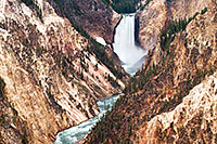 The Yellowstone River tumbles 308 feet into the Grand Canyon of the Yellowstone, the largest major waterfall by volume in the Rocky Mountains. - Wyoming Landscape Photograph