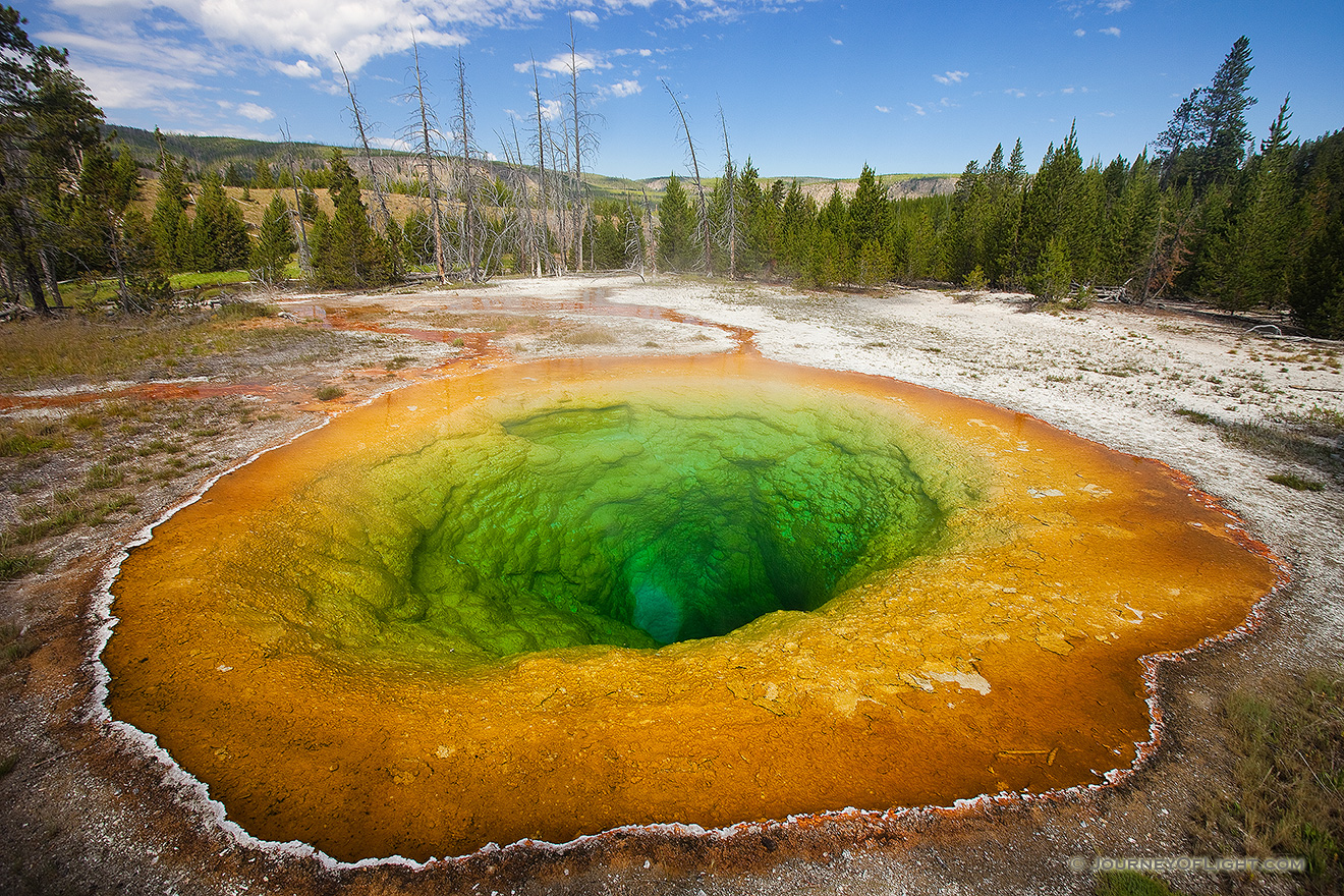 One of the most popular geysers in Yellowstone is the colorful Morning Glory Geyser in the Lower Geyser Basin. - Yellowstone National Park Picture