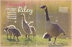 Hiking With Riley Story in Nebraska Life.  Contributed both text and photography. - Tear Sheet Photograph